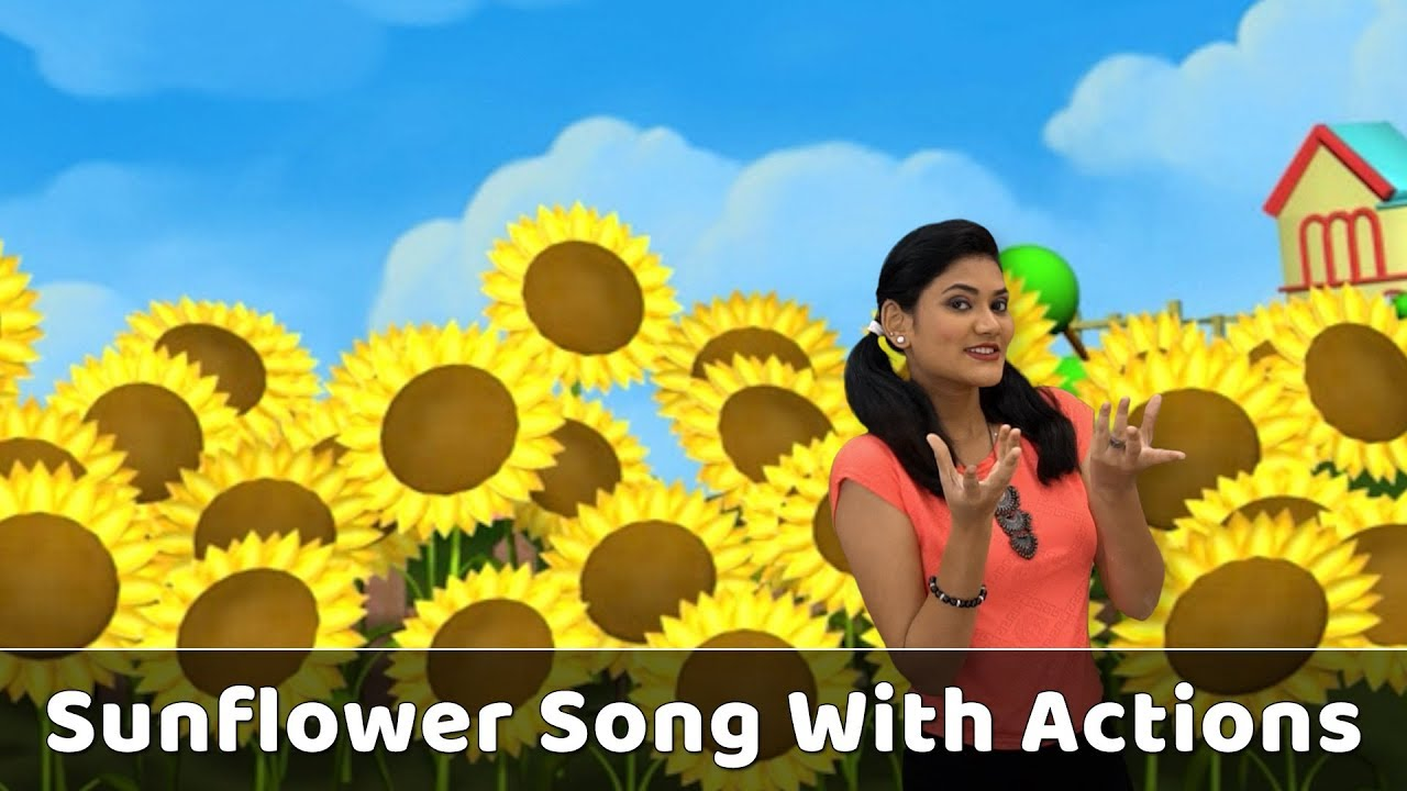 Sunflower Song With Actions Flower Rhymes For Babies Learn