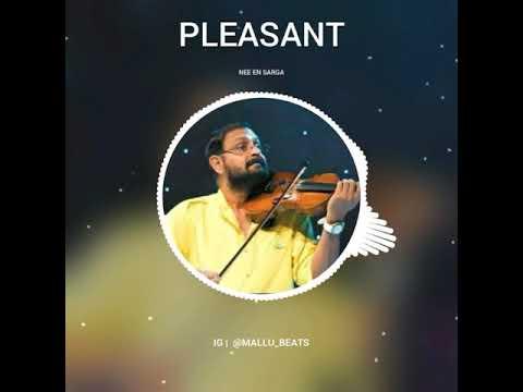 Nee En Sarga Soundaryame Violin   Malayalam Bgm