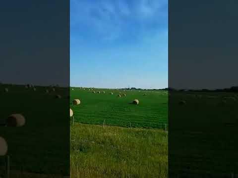 FARM IN CALGARY