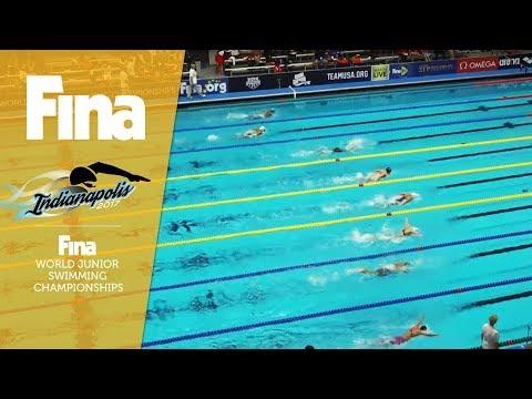 LIVE - Day 4 / Heats - FINA World Junior Swimming Championships