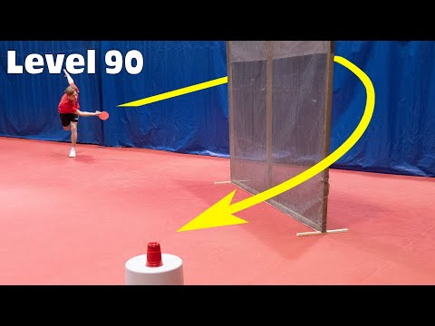 Ping Pong from Level 1 to 100