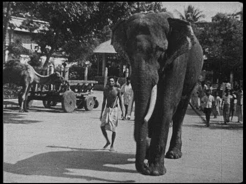 Madurai, South India, in 1945 and now