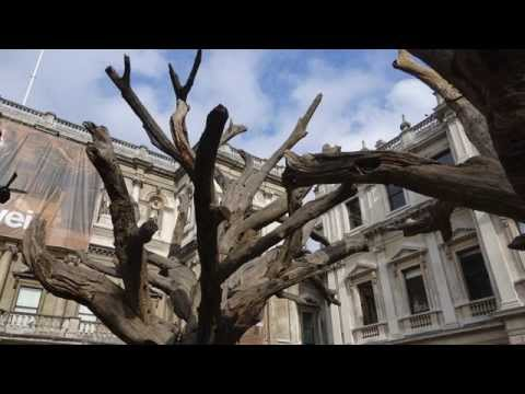 Aiweiwei Exhibition at London Royal Academy of Arts  in 4K