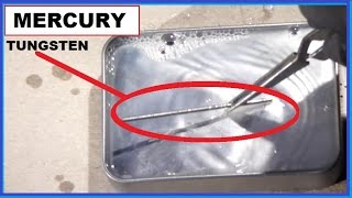 Mercury Vs Tungsten - World's Highest Surface Tension