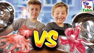 GUMMY VS. REAL FOOD 🤢 EKEL TINTEN FISCH UND SCHNECKENSCHLEIM 🤮 TipTapTube