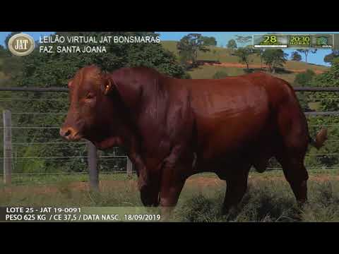 LOTE 025
