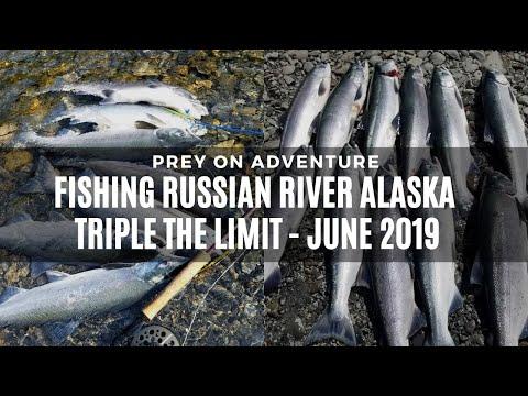 TRIPLE LIMIT INCREASE!! Combat Fishing Russian River Sockeye Salmon Alaska