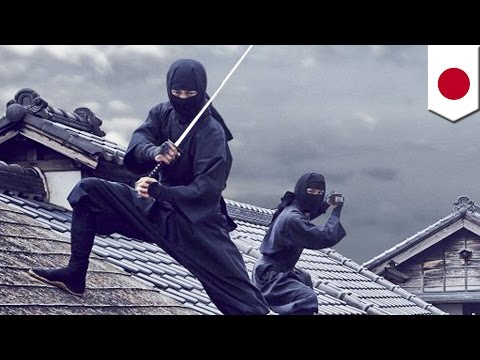 How to become a ninja: Japan looking to hire full-time ninjas to boost tourism - TomoNews