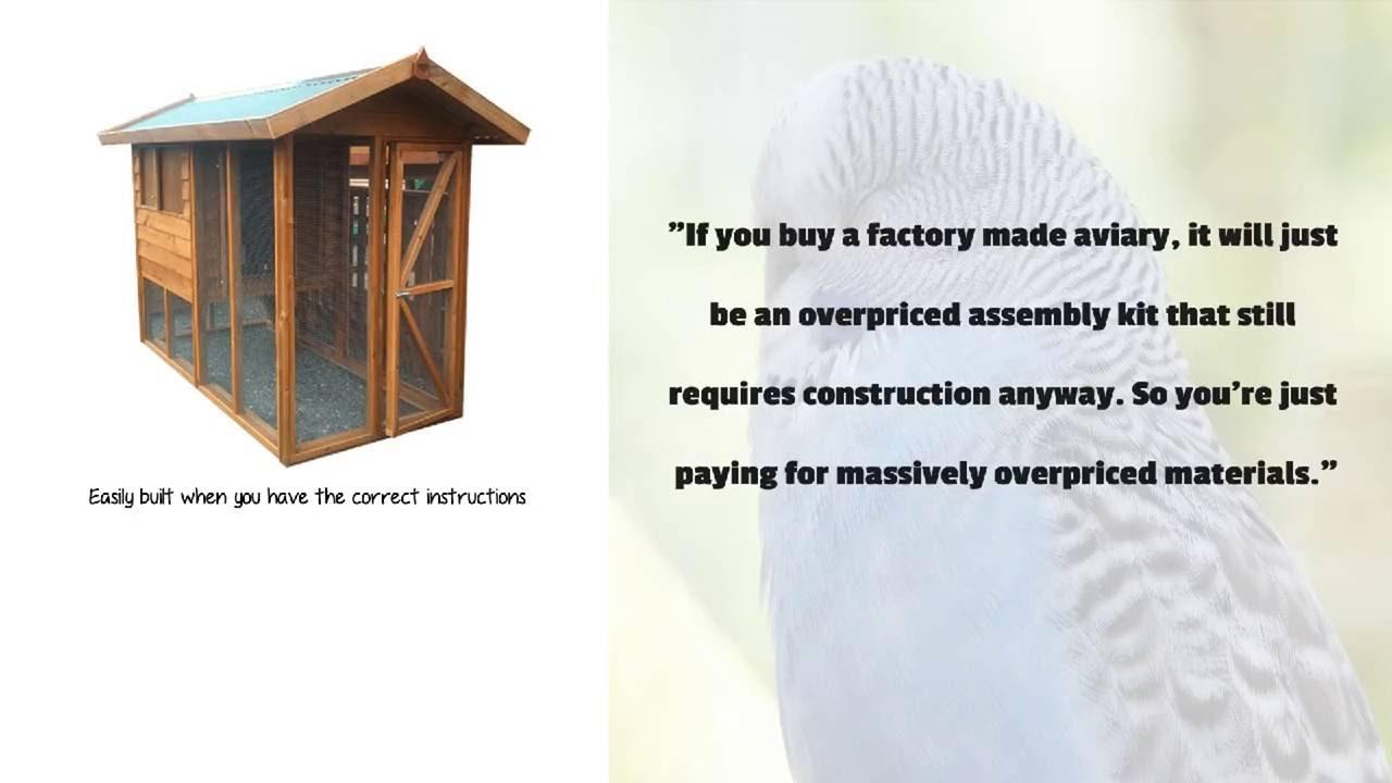 building a backyard aviary youtube