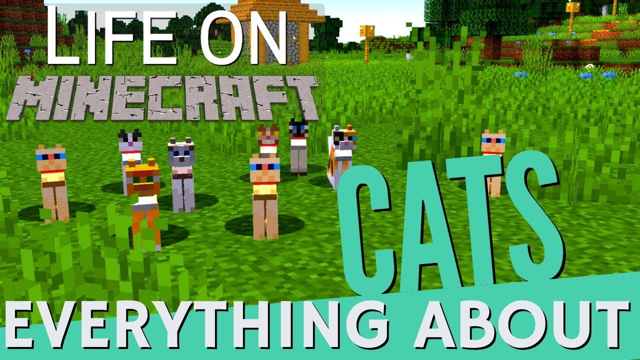Minecraft Cats All About Cats In Minecraft Breeding Taming Really Useful Things 1 14 4 Avomance Youtube