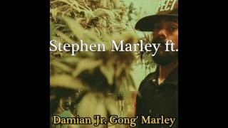 7 - Stephen Marley feat. Damian Marley - Perfect Picture