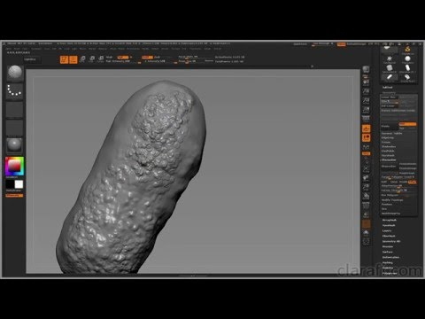 Introduction to ZBrush for Scientific Visualization - Chap4 ZRemesher and Masking