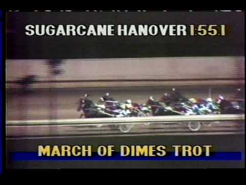 Sugarcane Hanover -- 1988 March of Dimes Trot