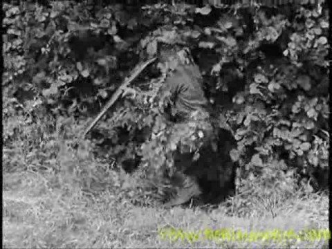 The Home Guard -  *The Real Dads' Army*