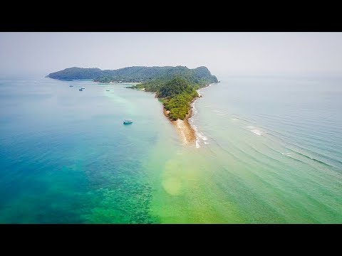 Saving The Coral Reef in Thailand | GoEco