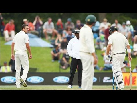 Australia vs New Zealand 2nd Test   Day 4   Josh Hazlewood Pleads Guilty To Dissent After Swearing