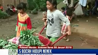 Di Polewali Mandar, Sulawesi Barat, 5 anak-anak nafkahi nenek - BIS 28/01