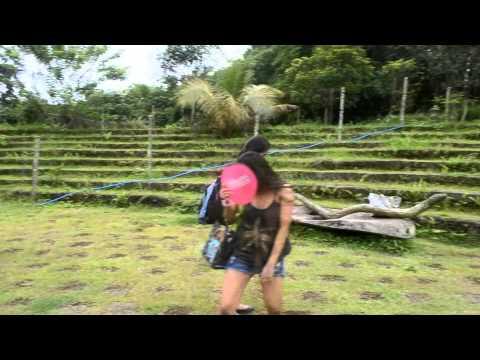 Balite Falls Amadeo, Cavite Advertisment LPU-C TTm303 G-1