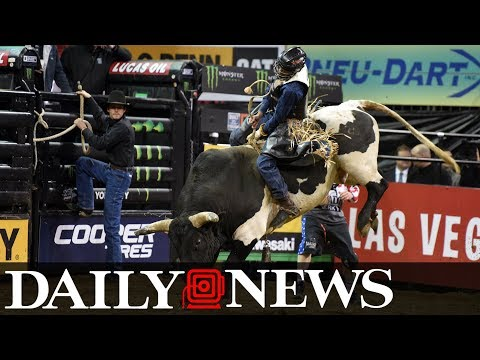 Bull riders take Madison Square Garden at Professional Bull Riders Monster Energy Buck Off
