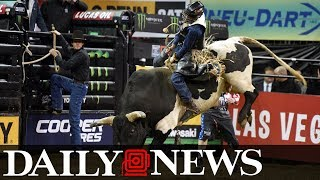 Bull riders of PBR take Madison Square Garden at Professional Bull Riders Monster Energy Buck Off