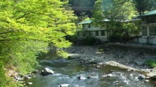 塩原温泉郷は畑下(はたおり)温泉にある 全長54mの吊橋 吊橋を渡っ...