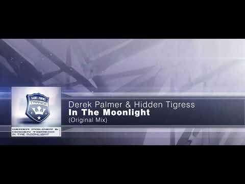 Derek Palmer & Hidden Tigress - In The Moonlight [Extended Mix]