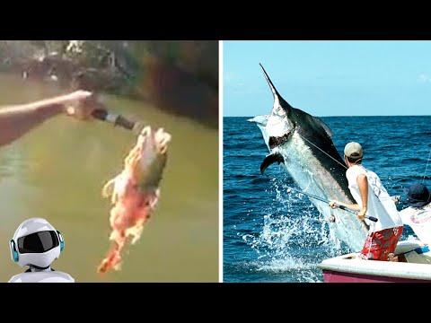 10 Шокирующих Моментов На Рыбалке, Снятых На Камеру