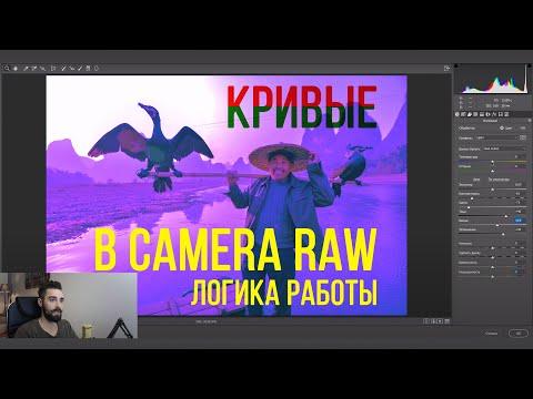 Логика работы с Кривыми в Photoshop (Camera Raw)