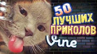 Самые Лучшие Приколы Vine! (ВЫПУСК 129) Лучшие Вайны [17+]