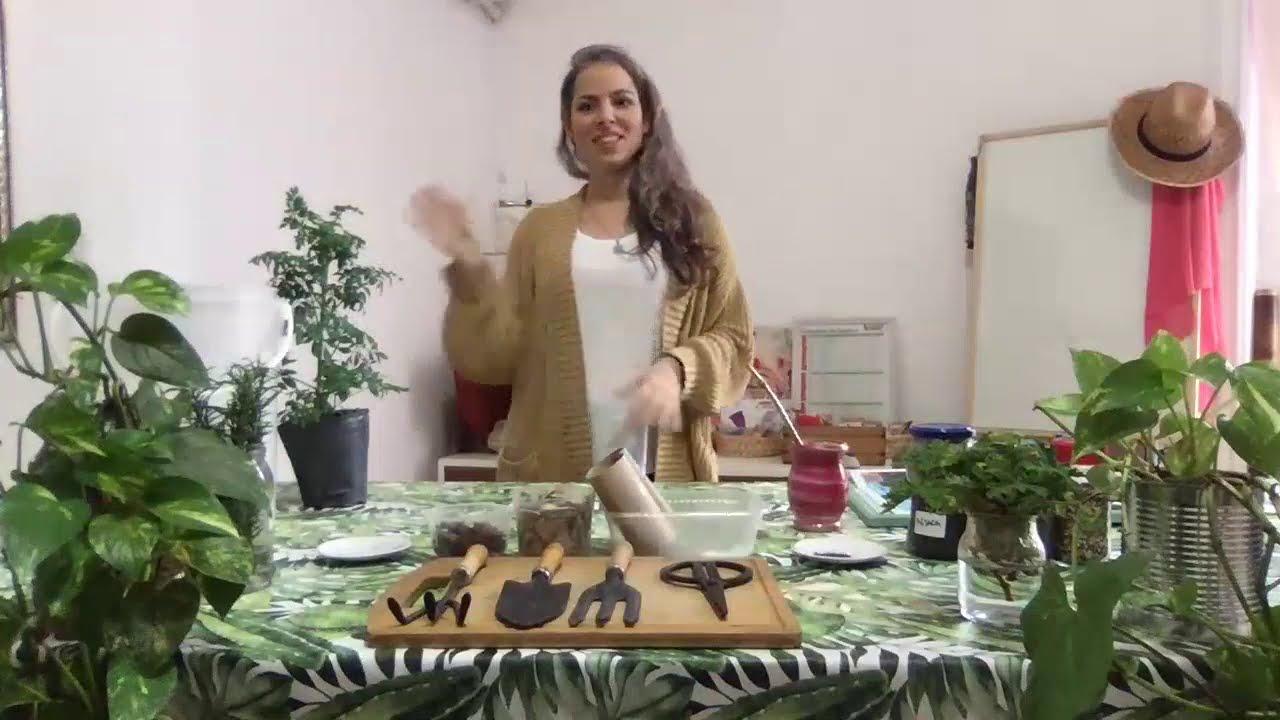 Taller Sustentable - Huerta en el Hogar