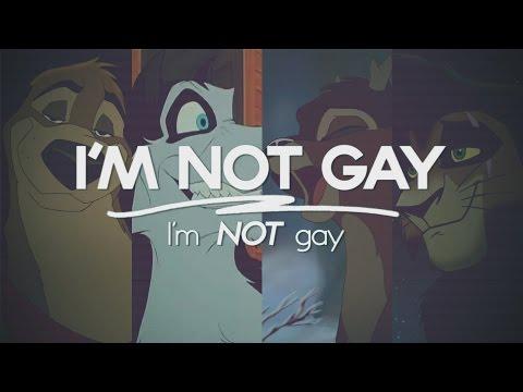 I'M NOT GAY ~