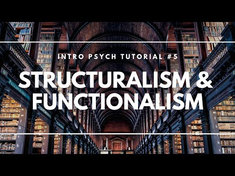 structuralism vs functionalism According to wikipedia, structuralism is an intellectual movement that was developed in france in the 1950s and 1960s, in which human culture is analyzed as a system.