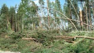ураган в сосново. ленобласть(ураган., 2010-08-01T12:55:18.000Z)