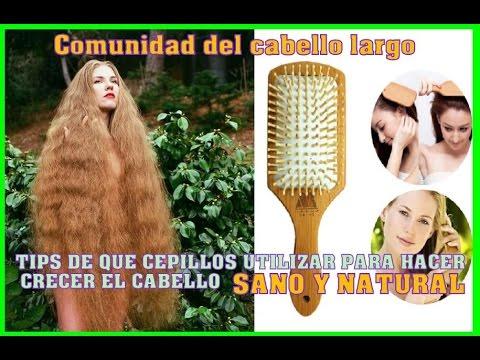 TIPS DE QUE CEPILLOS UTILIZAR Para el crecimiento del cabello sano y natural