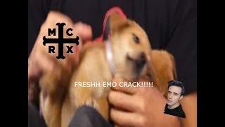 Fresh Emo Band Crack (For CrankThatFrank)