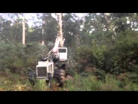 helicopter tree trimmer with Nm9l2z3nb3o on Search in addition Willow Tree Surgery Henbury in addition Hunter Escapes Tree Trimmer also This 40 Foot Buzz Saw Hangs From A Helicopter To Trim T 1589026400 moreover Clip 2747891 Stock Footage Telephone Pole Silhouette Slow Clouds Left Offset.
