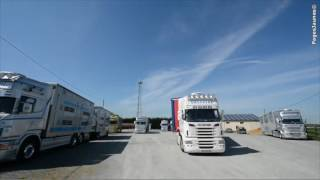 Transport Grégoire Transport d'animaux à Chemillé