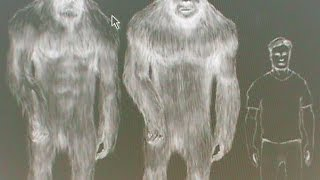 Slow Frame 8x new May 2015 Bigfoot footage EP06SE06 Survivorman
