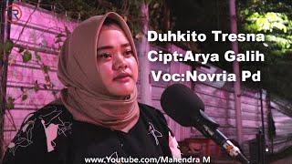 Download Lagu Arya Galih-Duhkito Tresno (Cover Novria PD) mp3