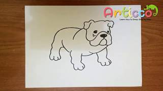 How to Draw a Bulldog Step by Step for Kids