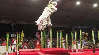 Nhà vô địch giải lân sư rồng quốc tế Helio Center lần I 2018- Yi Wei Singapore 9.16