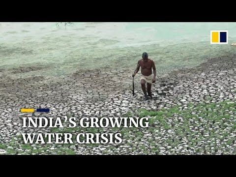 Chennai becomes latest city to be India's growing water crisis