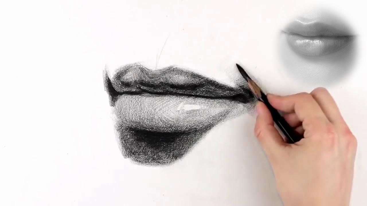Học Vẽ – Bài 1: Khối Miệng – Source Proko – [Collect Hero art]