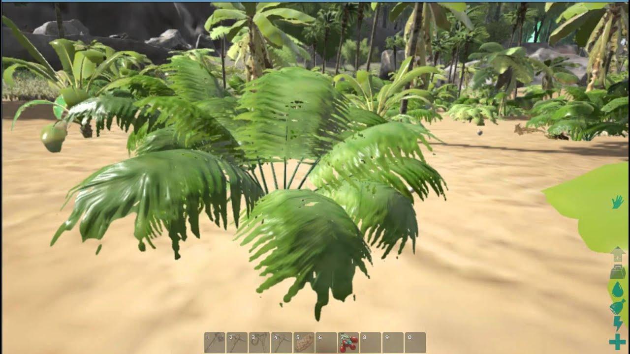 Ark Survival Evolved How To Get Fiber Youtube