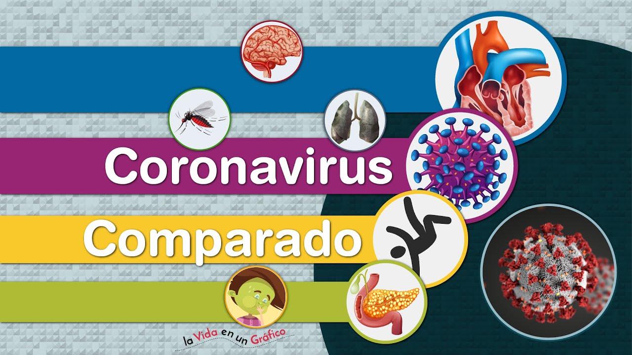 COVID-19 Entre las Principales Causas de Muerte en el Mundo - Comparación a 7 Meses de la Pandemia