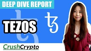 Deep Dive Review into Tezos (November 2018)