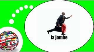 Французского видео урок = Тело человека № 2