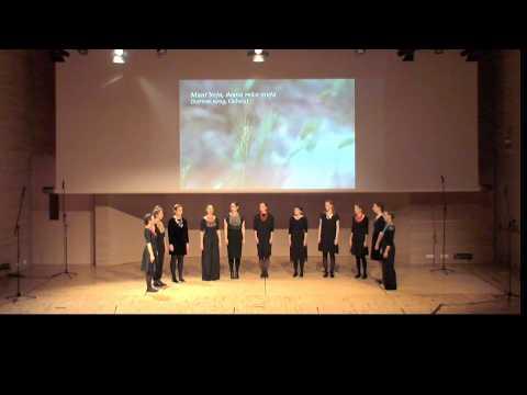 Muzička Akademija Live Stream