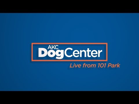 AKC DogCenter: Live From 101 Park | February 8, 2019