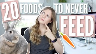 20 FOODS TO NEVER FEED RABBITS 🥕